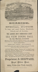Advert for the Royal Albion Hotel 6916
